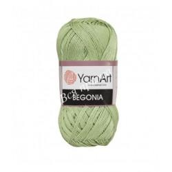 BEGONIA YarnArt 6369